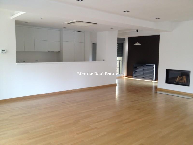 Banovo brdo450sqm house for rent (4)