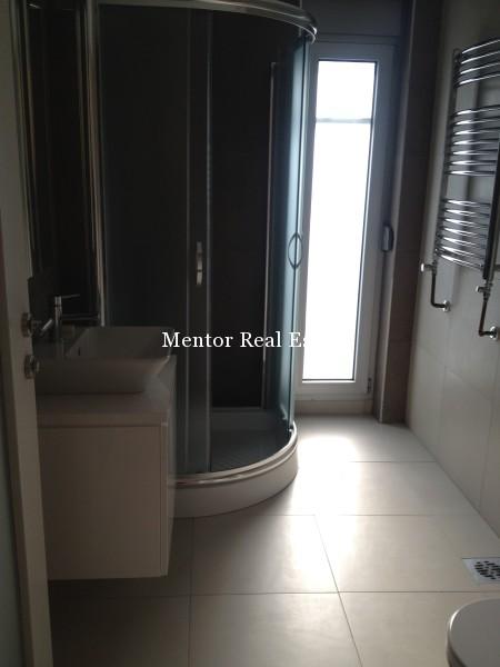 Banovo brdo450sqm house for rent (41)