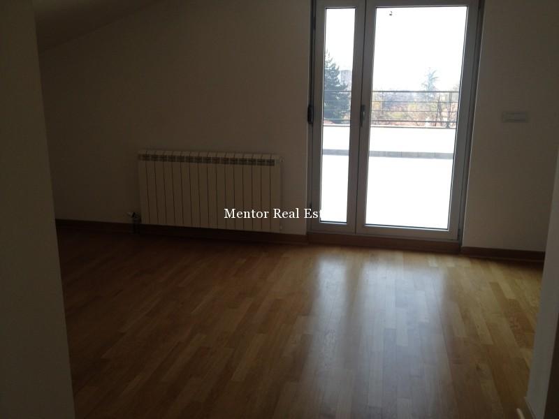 Banovo brdo450sqm house for rent (43)