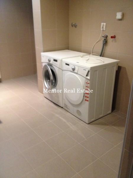 Banovo brdo450sqm house for rent (46)