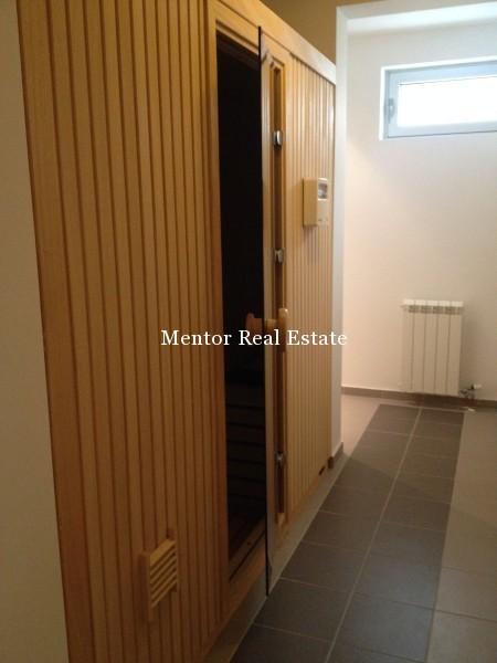 Banovo brdo450sqm house for rent (49)