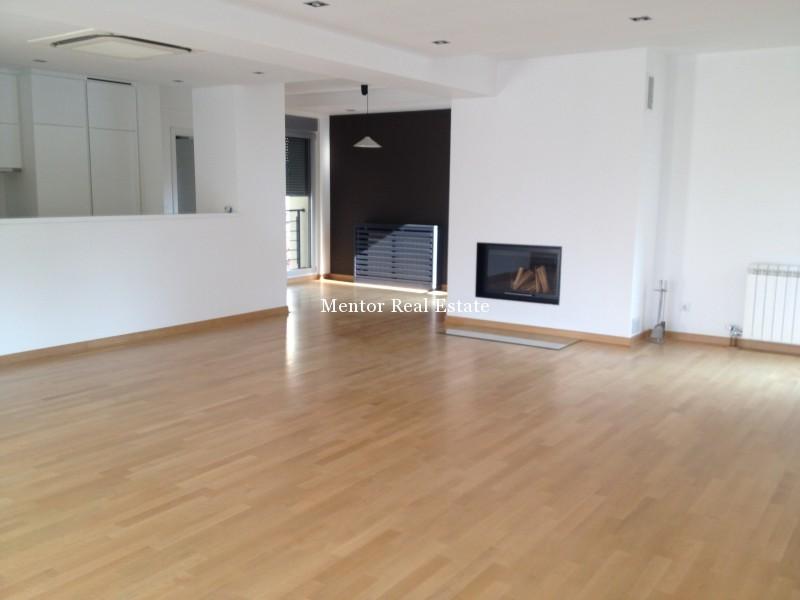 Banovo brdo450sqm house for rent (5)