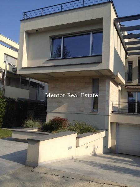 Banovo brdo450sqm house for rent (55)