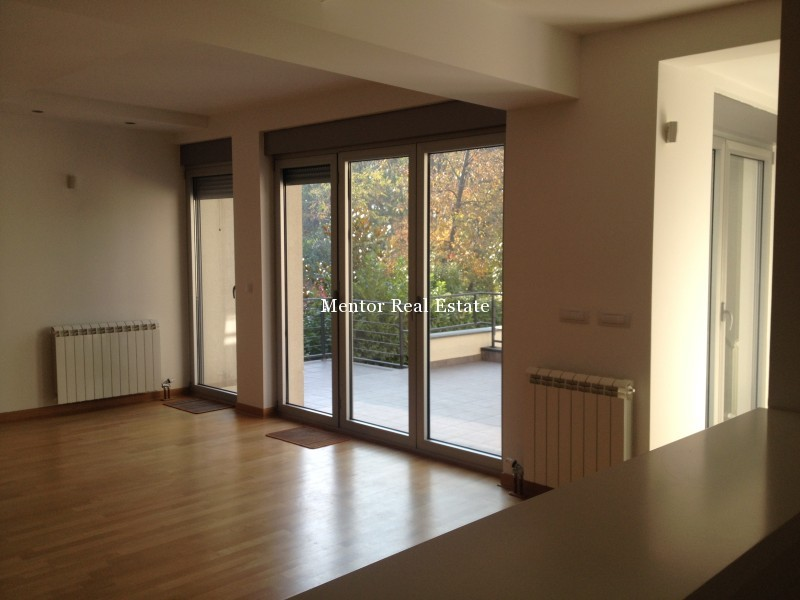 Banovo brdo450sqm house for rent (9)
