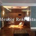 Centre 210sqm apartment for rent (9)