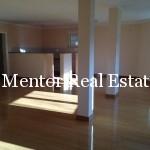 Dedinje 1000sqm house for rent or sale (5)