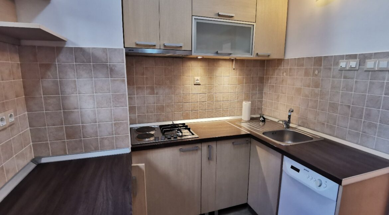 Dedinje 160sqm apartment with garden for rent (14)