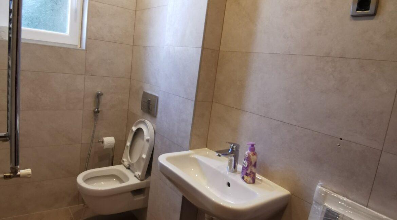 Dedinje 220sqm house for rent (14)