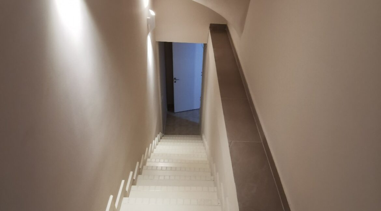 Dedinje 220sqm house for rent (15)