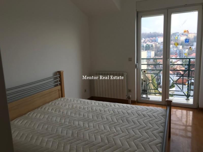 Dedinje 220sqm house for rent (9)