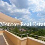 Dedinje 251m2 apartment for rent (33)