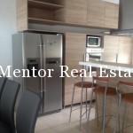 Dedinje 280sqm new house for rent (19)