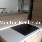 Dedinje 280sqm new house for rent (24)