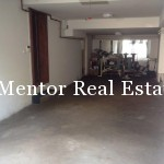Dedinje 320sqm house for rent (2)