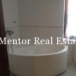 Dedinje 320sqm house for rent (8)