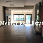 Dedinje 350sqm house for rent (5)