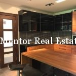 Dedinje 350sqm house for rent (9)
