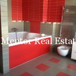 Dedinje 700sqm house for rent with swimming pool (8)