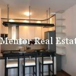 Dedinje 70sqm furnished apartment for rent (15)