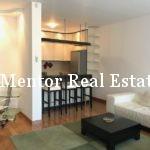 Dedinje 70sqm furnished apartment for rent (4)
