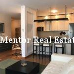 Dedinje 70sqm furnished apartment for rent (8)