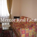 Dedinje apartment for rent (10)
