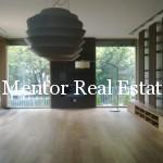 Dedinje extra luxury apartment  (1)
