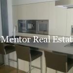 Dedinje extra luxury apartment  (5)