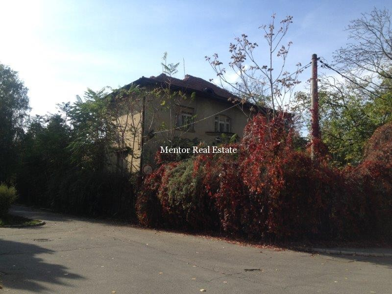 Dedinje house 500sqm and land 3000sqm for sale  (2)