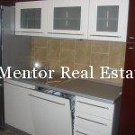 Dedinje house for rent (8)