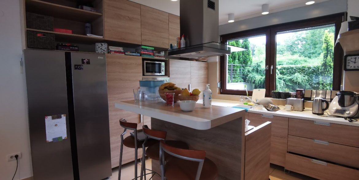 Dedinje house with swimming pool for rent (1)