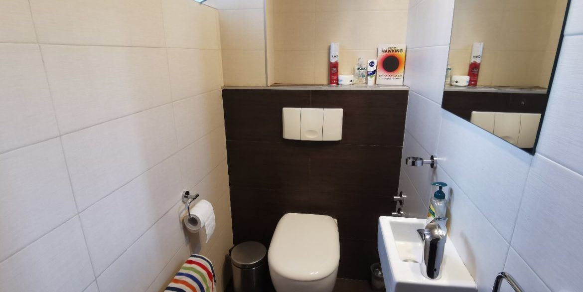 Dedinje house with swimming pool for rent (15)