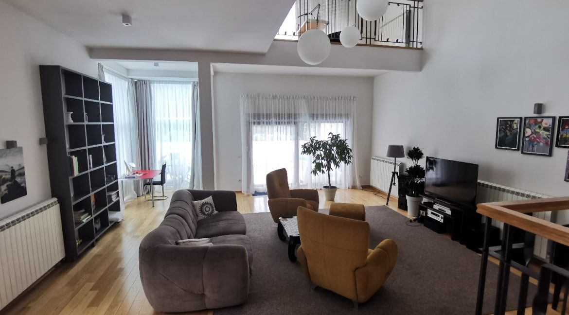 Dedinje house with swimming pool for rent (4)