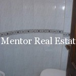 Dedinje house with two apartments for rent (2)