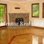 Dedinje house with two apartments for rent (3)