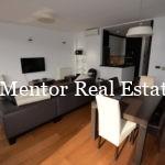 Dedinje luxury apartment for rent (1)