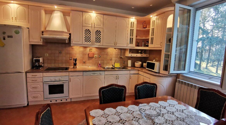Dedinje luxury apartment for rent (12)
