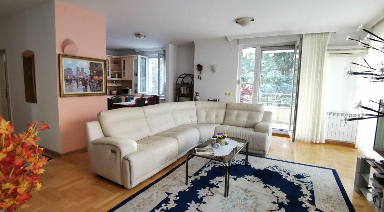 Dedinje luxury apartment for rent (4)