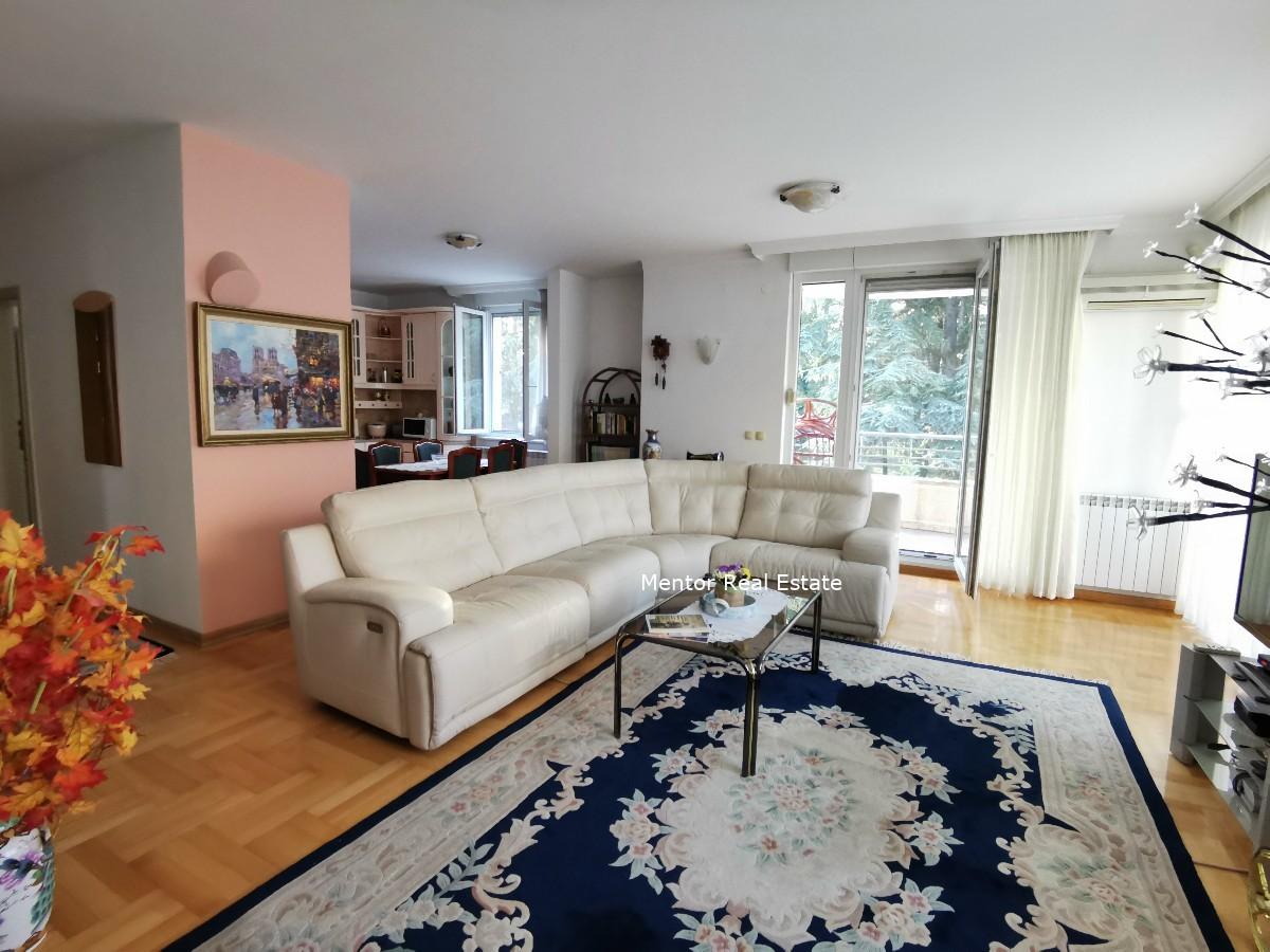 Dedinje luxury apartment for rent