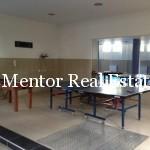 Dedinje luxury flat for rent (32)
