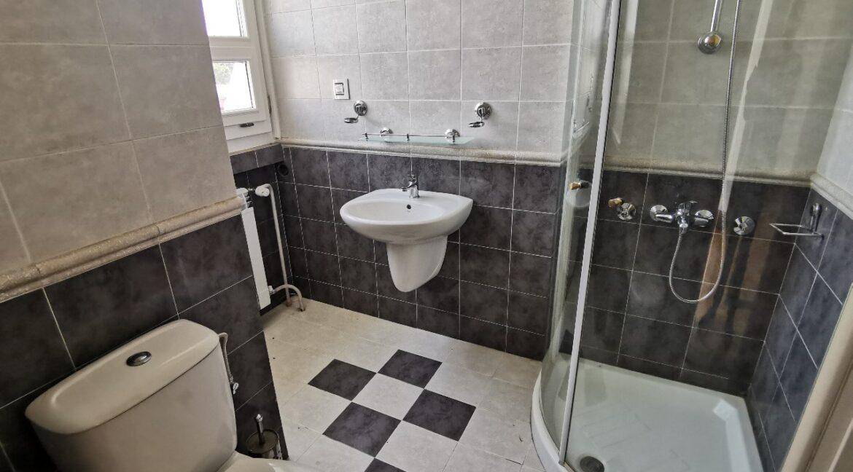 Dedinje luxury house for sale (7)