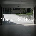 Dedinje luxury single house for rent or sale (15)
