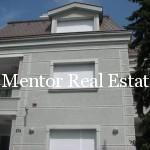 Dedinje luxury single house for rent or sale (26)