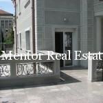 Dedinje luxury single house for rent or sale (9)