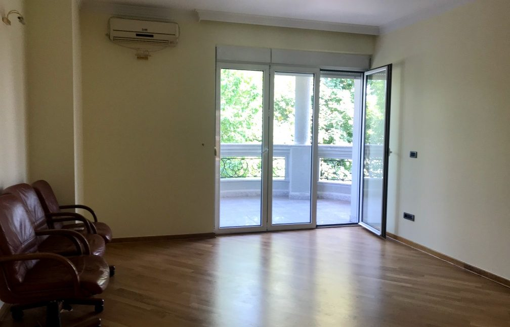 Rent Luxury House Dedinje (27)