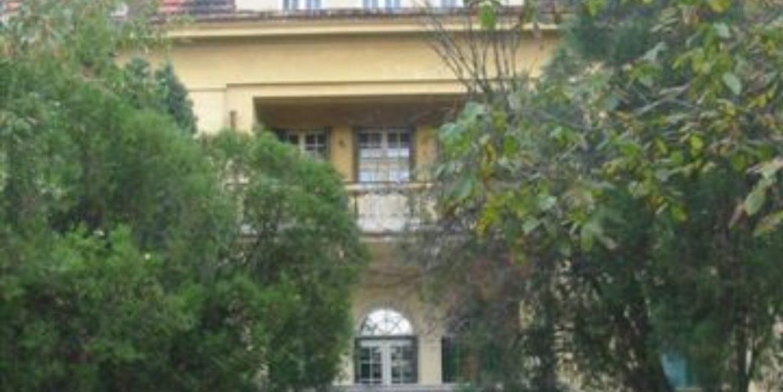 Rent lux house dedinje (10)