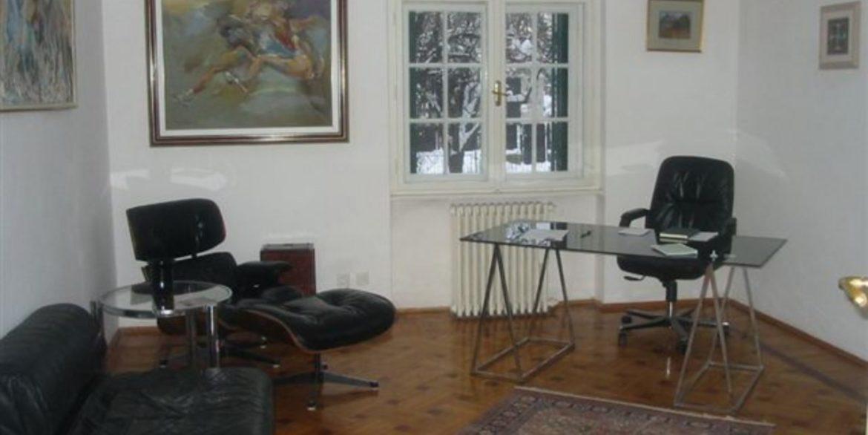 Rent lux house dedinje (14)