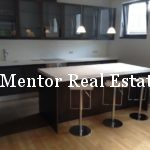 Senjak 160sqm luxury apartment for rent (7)