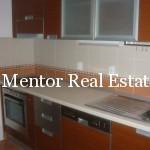Vozdovac 120sqm apartment for rent (3)