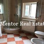 Vozdovac 270sqm house for rent (12)